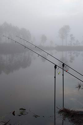 Century Rods being used for fishing
